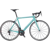 Specialissima EPS N17  Carbon   Matt Blue