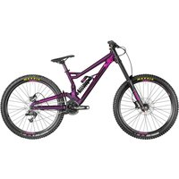 Straitline 7.0    Purple