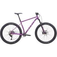 Pine  1     Purple