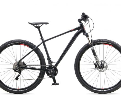 Axess  Snipe 29 MTB Disc