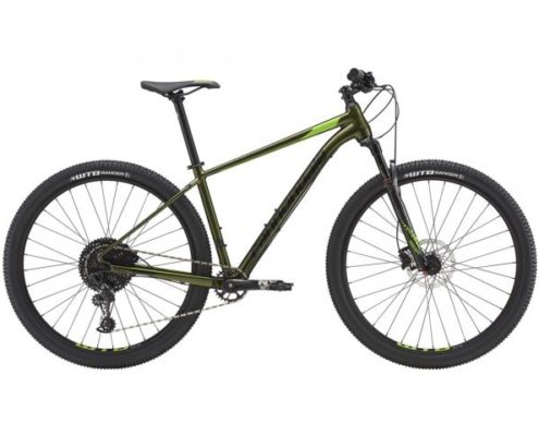 Cannondale Trail 1 27.5 - MTB Hardtail 2019 | vulcan green